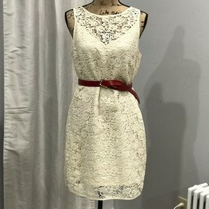 The Limited lace dress size 8